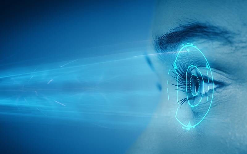 색과 명암을 인지하는 우리 눈의 정교한 구조와 기능!본다'라는 기능을 위한 최적의 구조